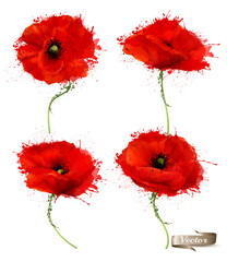 Abstract Red Poppies Flowers. Vector.
