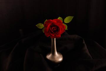 rote Rose in Vase