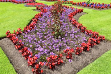 Floral decorative garden.