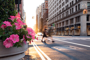 Fotomurales - New York City street scene with colorful flowers and men walking across the intersection in Manhattan