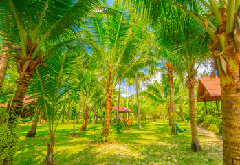 Bungalow in hotel at tropical beach - vacation background