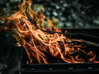 Poster Firewood texture A burning wood fire with red flames and a glowing embers. The fire in the grill