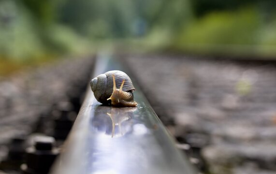 Just be on the right track