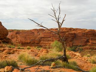 Kings Canyon - Australia