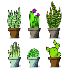 set of green plants vector set of cactus and flowers