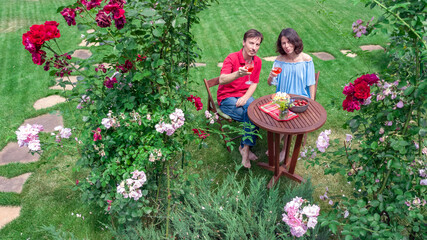 Young couple enjoying food and wine in beautiful roses garden on romantic date, aerial top view...
