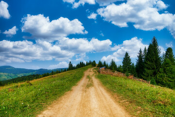 Rural path in mountains nature field summer meadow road