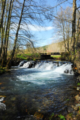 Warterfall of Cereixo river in the forest near Laza, a village in the province of Ourense, Galicia, Spain
