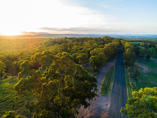 Green gum trees lining rural country road in afternoon light with farm paddock beside