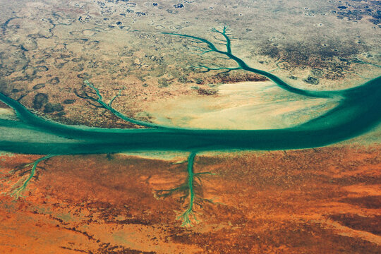 green vein channel