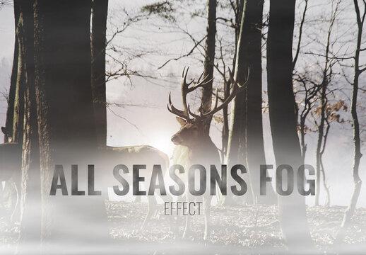 Seasonal Fog Effects Mockup