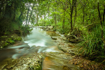 A stream flows to the top of Goomoolahra Falls in Springbrook National Park, Queensland shot with a long exposure