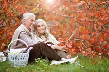 Portrait of senior couple having picnic outdoors