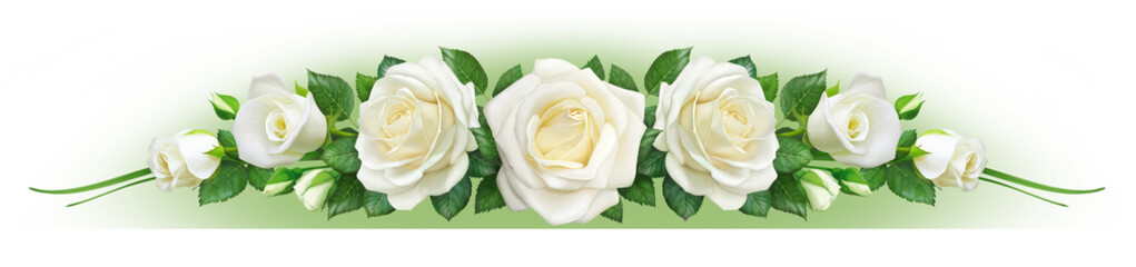 Fotobehang Roses White roses