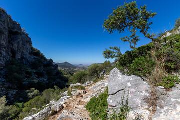 Mediterranean landscape in the Sierra de Grazalema, Andalusia, Spain.