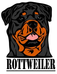 rottweiler and letters
