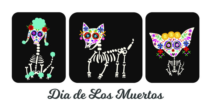 Day of the Dead, Dia de los muertos, animal dog skulls and skeleton decorated with colorful Mexican elements and flowers.