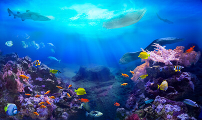 A small boat floating over a coral reef. Underwater sea world. Life in the ocean. Colorful tropical fish. Coral reef ecosystem.