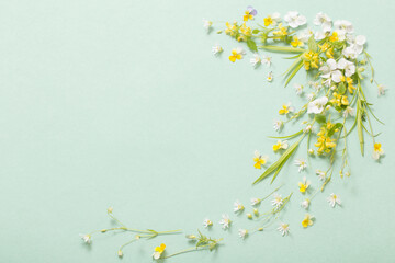 wild flowers on paper background