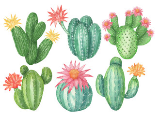 Set of cacti with flowers
