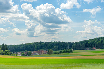 Fotoväggar - green field and blue sky