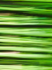 paesaggio naturale verde astratto