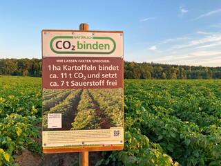 Kartoffeln - Kohlendioxid Speicher