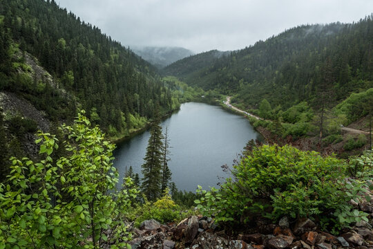 Landscape with a beautiful mountain lake among mountains and fog covered with coniferous and deciduous trees forest.