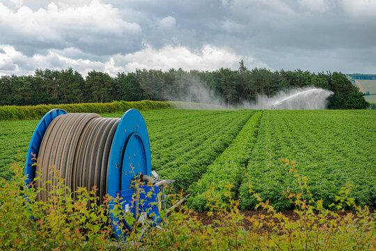Potato Field Automatic Watering System