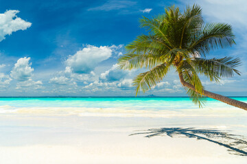 An Amazing tropical beach