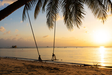 A swing hangs on a palm tree on a tropical sandy beach by the ocean. Sunset on the beach