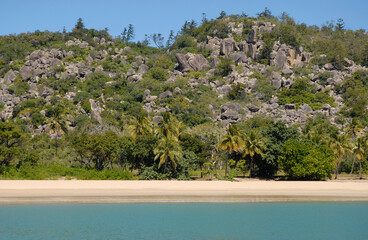 View from sea to palm fringed beach at Radical Bay, Magnetic Island, Queensland, Australia
