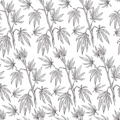 Cannabis branch, medical marijuana plant for curing seamless pattern