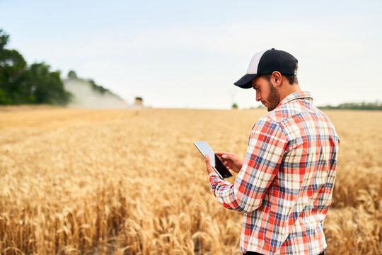 Smart farming using modern technologies in agriculture. Man agronomist farmer holding digital tablet computer standing in a wheat field and using apps, internet for business management and analytics.