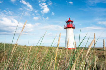 Wall Mural - Lighthouse List West on the island of Sylt, Schleswig-Holstein, Germany