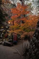 神代植物公園の秋模様