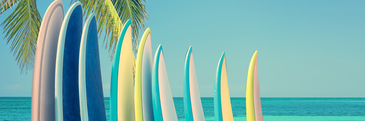 Panorama of vintage colorful surfboards on a tropical beach by the ocean with palm tree Wall mural