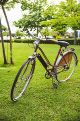 Aluminium Prints Picnic Vintage bicycle on a garden