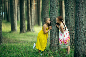 Two little girl friends play in a pine Park.