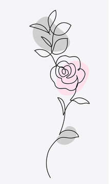 One line drawing. Ornament with garden rose and leaves. Hand drawn sketch. Vector illustration.