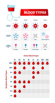 Blood group types vector illustration