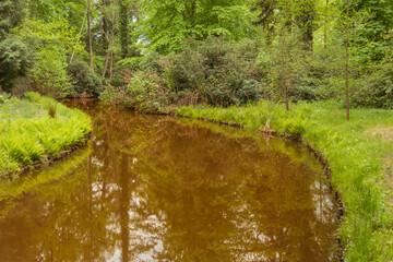 Rzeka Czerna przepływająca przez park w mieście Iłowa w Polsce.
