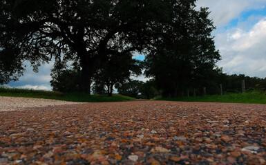 Beautiful county road