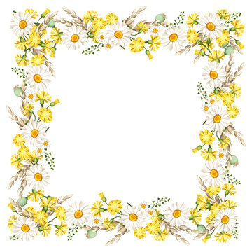 Vector frame with daisies and yellow wild flowers and ears of wheat.