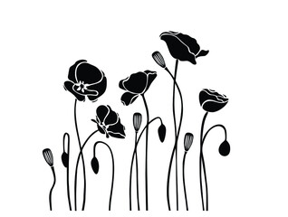 Fototapeta  Poppy flower flower wall sticker office vinyl wall obraz