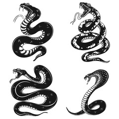 Set of illustrations of poisonous snake in engraving style. Design element for logo, label, sign, poster, t shirt. Vector illustration
