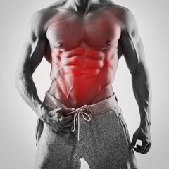 Specialization for abdominal muscles in bodybuilding.