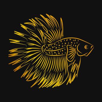 Betta Fish Crowntail Golden Line Art For Logo
