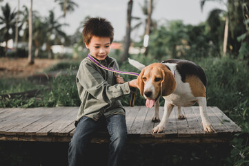Kid and dog lifestyle at park. Little boy together with pet as best friend. Outdoor activity on summer holiday.