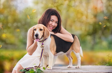 Fall and autumn season. Asian woman together with dog as best friend. Outdoor lifestyle at park.